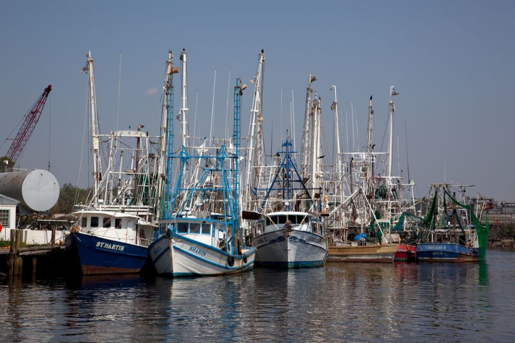 A row of fishing boats in a harbor.